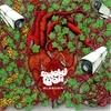 Festivalinfo recensie: Mutoid Man Bleeder