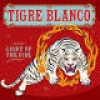 Tigre Blanco Light Up The Fire cover