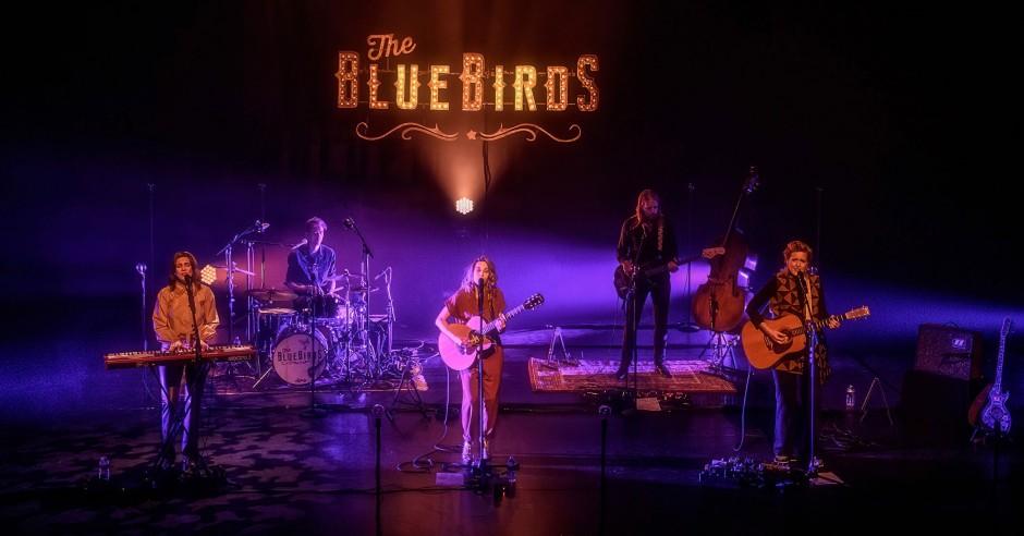 Bekijk de The BlueBirds - 30/09 - Energiehuis foto's