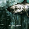 Cover Dry The River - Shallow Bed