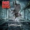 Cover Mr. Big - Defying Gravity