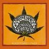 Brant Bjork Black Power Flower cover