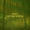 Cover Remy van Kesteren - The Red Turtle