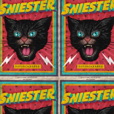 Sniester