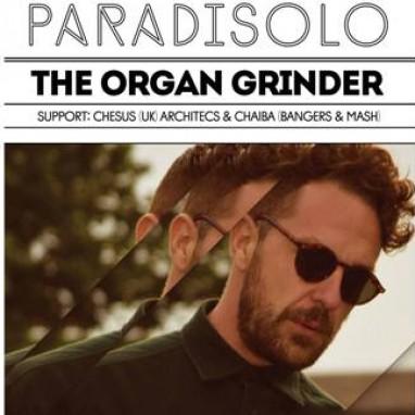 paradisolo organ grinder