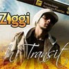 Ziggi – In Transit
