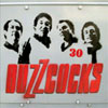 The Buzzcocks – 30