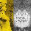 Festivalinfo recensie: De Tigers fan Greonterp Tigers Fan Greonterp