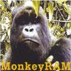 MonkeyRAM-MonkeyRAM