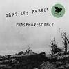 Dans Les Arbres Phosphorescence cover