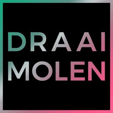 Draaimolen Festival news_groot
