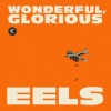 Eels Wonderful, Glorious cover