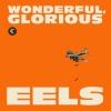 Eels Wonderful, Glorious cover