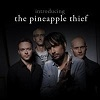 The Pineapple Thief Introducing... cover