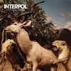 Interpol Our Love to Admire cover