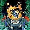 Festivalinfo recensie: Amariszi Babel Fish