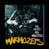 Festivalinfo recensie: Marmozets The Weird And Wonderful Marmozets