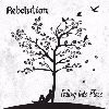 Rebelution Falling Into Place cover