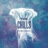 Festivalinfo recensie: The Chills The BBC Sessions