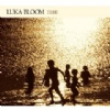 Luka Bloom Tribe cover