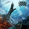 Cover Depths Of Kronos - From The Void