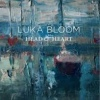 Luka Bloom Head And Heart cover