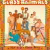 Cover Glass Animals - How To Be A Human Being
