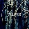 True Zebra Adoremotion cover